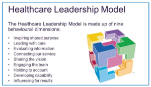 9 dimensions of the Healthcare Leadership Model & logo